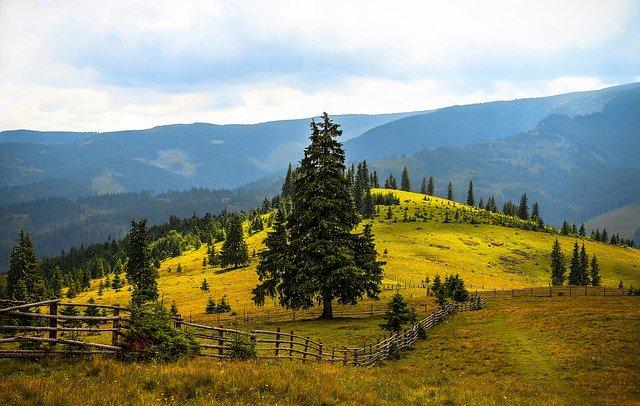 příroda na horách