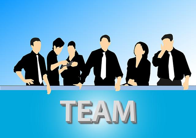 pracovní tým