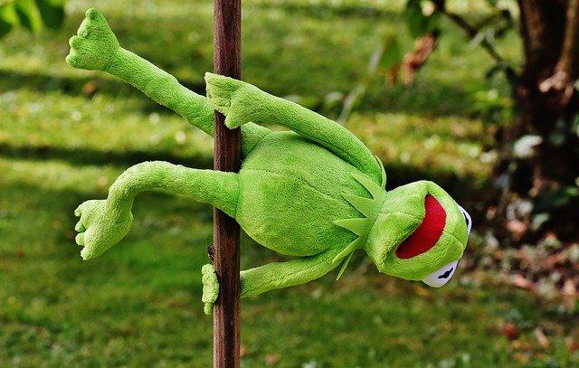 žabák při pole dance