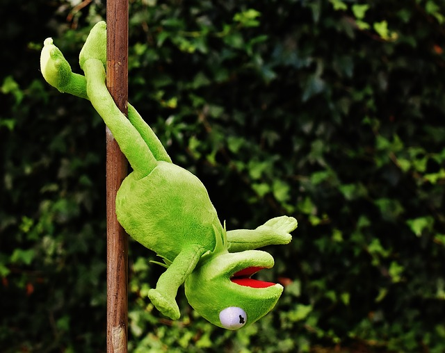 žabák na tyči hlavou dolu