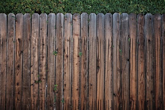 dřevěný plot, zeleň