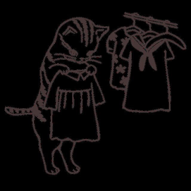 Jak udělat správný průvan v šatníku?