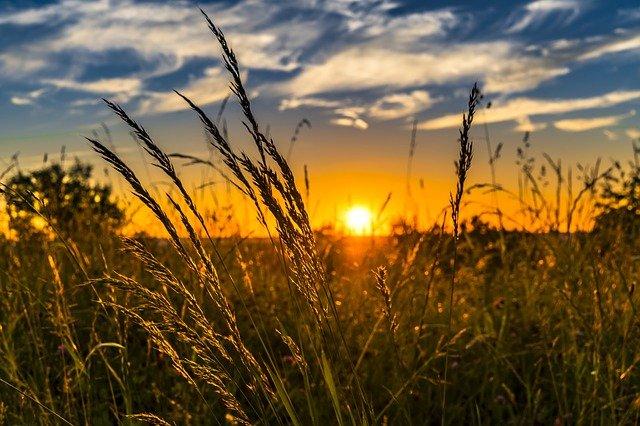 Chraňme se před sluncem