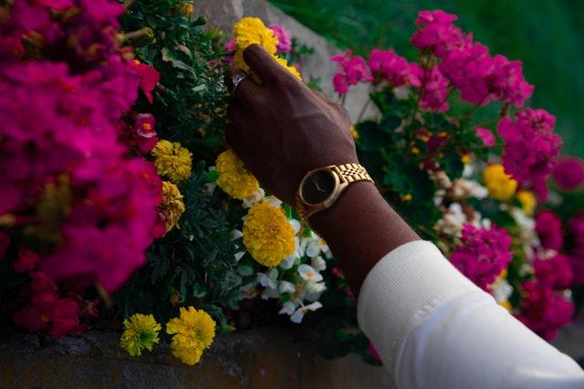 Detail ženské ruky upravující zahradní květiny
